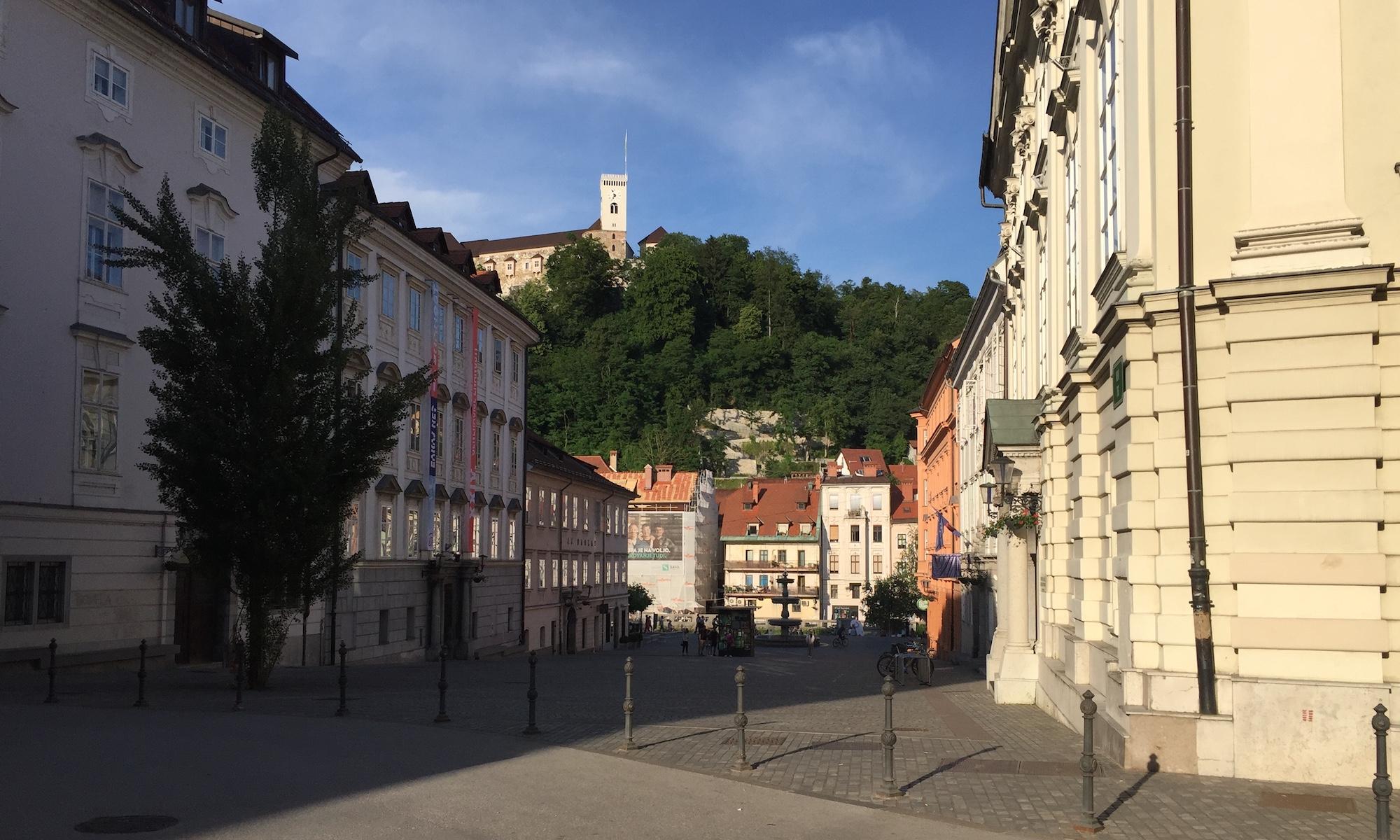 InterRad XVI, Ljubljana 2021